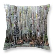 Magical Bayou Throw Pillow by Carol Groenen