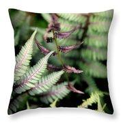 Magical Forest 3 Throw Pillow by Karen Wiles