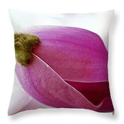 Magnolia Blossom With Cap Throw Pillow by Lisa Phillips