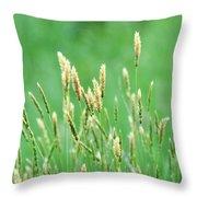 Make A Joyful Sound Throw Pillow by Rebecca Sherman