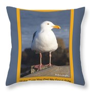 Make Sure You Get My Good Side Poster Throw Pillow by Barbara Snyder