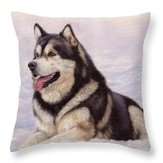Malamute Throw Pillow by David Stribbling