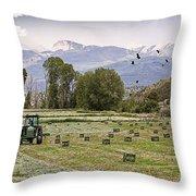 Mancos Colorado Landscape Throw Pillow by Janice Rae Pariza