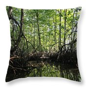 mangrove forest in Costa Rica 2 Throw Pillow by Rudi Prott