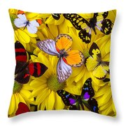 Many Butterflies On Mums Throw Pillow by Garry Gay