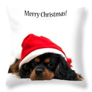 Marmaduke isolated Throw Pillow by Jane Rix