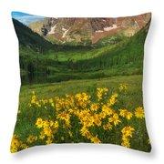 Maroon Summer Throw Pillow by Darren  White