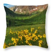 Maroon Summer Throw Pillow by Darren  White