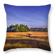 Marsh Hammock Throw Pillow by Marvin Spates