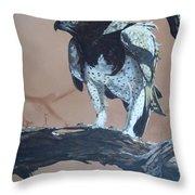 Martial Eagle Throw Pillow by Robert Teeling