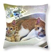 Mary's Cats Throw Pillow by Joan  Minchak