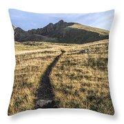 Matterhorn Peak - Colorado Throw Pillow by Aaron Spong