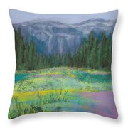 Meadow In The Cascades Throw Pillow by David Patterson