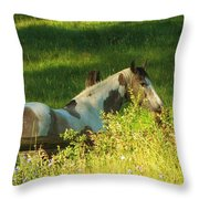 Meet Me At The Fence Throw Pillow by Feva  Fotos
