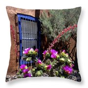 Mesilla Cholla Throw Pillow by Kurt Van Wagner