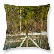 Methow River Springtime Throw Pillow by Omaste Witkowski
