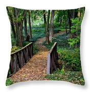 Metroparks Pathway Throw Pillow by Frozen in Time Fine Art Photography