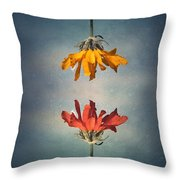Middle Ground Throw Pillow by Tara Turner