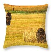 Midwest Farming Throw Pillow by Frozen in Time Fine Art Photography
