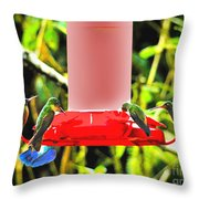 Mindo Hummer Gathering Throw Pillow by Al Bourassa