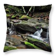 Mini Waterfalls Throw Pillow by Kaye Menner