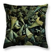 Miocene Fossil Shark Tooth Assortment Throw Pillow by Rebecca Sherman