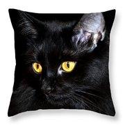 Miss Anastasia Throw Pillow by Camille Lopez