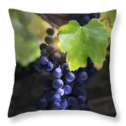 Mission Grapes II Throw Pillow by Sharon Foster