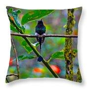 Mister Santa Pants II   Mindo Hummingbird Throw Pillow by Al Bourassa