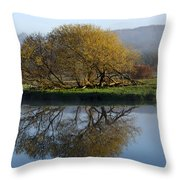 Misty Golden Sunrise Reflection Throw Pillow by Christina Rollo