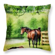 Mom And Foal Throw Pillow by Darren Fisher