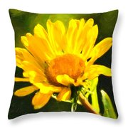 Moment In The Sun - Golden Flower - Northern California Throw Pillow by Mark E Tisdale