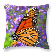 Monarch Butterfly Throw Pillow by Olivier Le Queinec