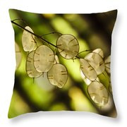 Money On Trees Throw Pillow by Christi Kraft