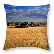 Montana   Field And Hills Throw Pillow by Anonymous