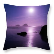 Moonlight Reflection Throw Pillow by Chad Dutson