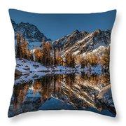 Morning At Horseshoe Lake Throw Pillow by Mike Reid