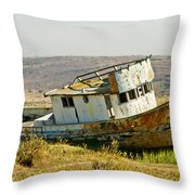 Morning at the Pt Reyes Throw Pillow by Bill Gallagher