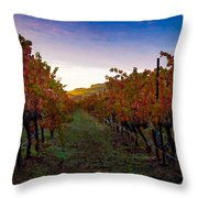 Morning at the Vineyard Throw Pillow by Bill Gallagher
