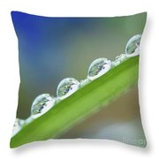 Morning Dew Drops Throw Pillow by Heiko Koehrer-Wagner