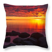 Morning Glow Throw Pillow by Mary Amerman