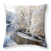 Morning Light Fresh Snowfall Gauley River Throw Pillow by Thomas R Fletcher