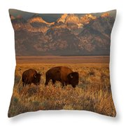 Morning Travels In Grand Teton Throw Pillow by Sandra Bronstein