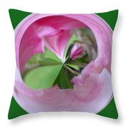 Morphed Art Globe 11 Throw Pillow by Rhonda Barrett
