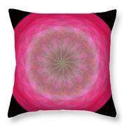 Morphed Art Globe 12 Throw Pillow by Rhonda Barrett