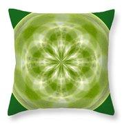 Morphed Art Globe 27 Throw Pillow by Rhonda Barrett