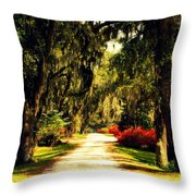 Moss on the Trees at Monks Corner in Charleston Throw Pillow by Susanne Van Hulst