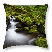 Mossy Arch Cascade Throw Pillow by Darren  White