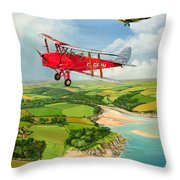Mothecombe Moths Throw Pillow by Richard Wheatland
