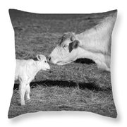 Mother and Child Throw Pillow by Steven  Michael